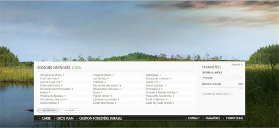UPM Website Forest Life