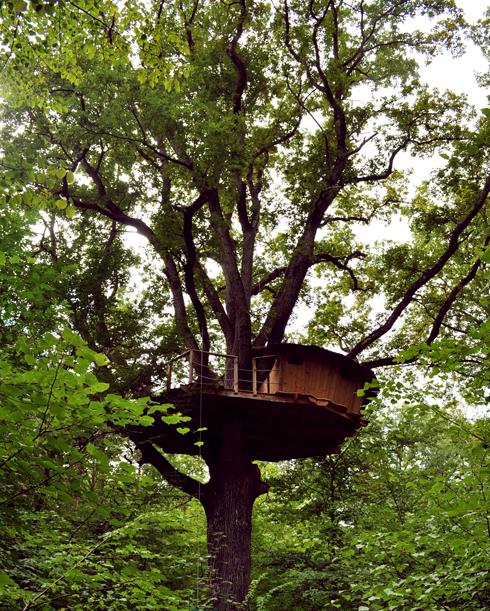 Cabane dans les arbres - Domaine de Graville