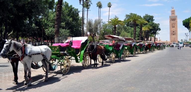 Calèches vers la place Jemaa El Fna, Marrakech