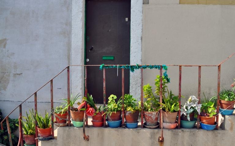 pots-de-fleurs