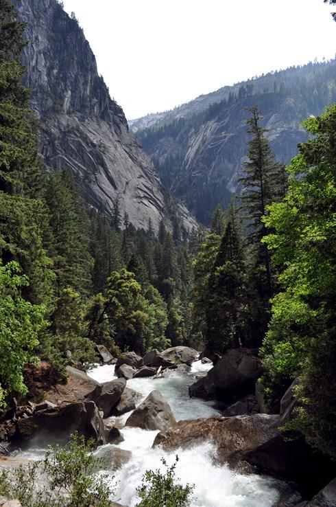 Yosemite Park California