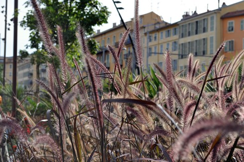 Promenade du Paillon - Nice